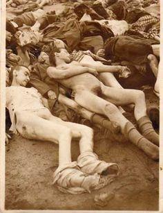Bergen-Belsen Concentration Camp: Photographs
