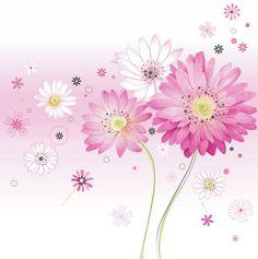Lynn Horrabin - pink and white daisies.jpg