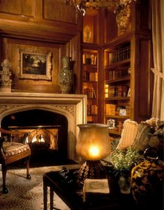 Library with a cozy fire.