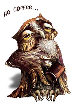 No coffee Owl Pinned by www.myowlbarn.com