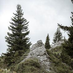 Eine Verbindung zur Erde - eine Verbindung zu uns selbst. ✨Den Horizont in unserer Natur erweitern und diese mit all unseren Sinnen aufnehmen. Die frische Bergluft in Oberlech lädt alle Gäste dieses Kraftortes 〽️ ein, tief durchzuatmen und neue, frische Energie aufzunehmen! #hotelgoldenerberg #sommer #berge Snow, Outdoor, Mountains, Summer, Nature, Outdoors, Outdoor Games, The Great Outdoors, Eyes