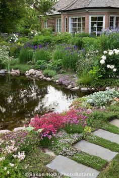 water's edge...Backyard pond with stepping stone path and perennial garden; Barrington Hills, Illinois garden