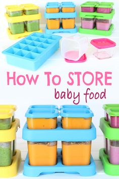 User Manual And Cookbook 4 Storage Containers Magic Baby Bullet Freezer Trays