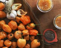 An Ode to Chile Peppers (and the Best Hot Sauce Recipe I've Got) | Bon Appetit
