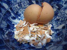 Simple Homecraft: Saving Egg Shells for the Garden