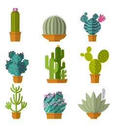 Home cactus garden by Microvector on @creativemarket