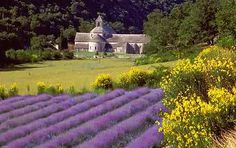 Provence- can't wait.