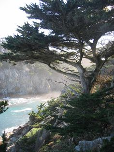Big Sur Tourism: 26 Things to Do in Big Sur, CA