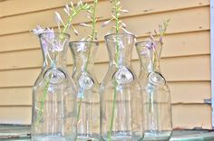 3 glass jugs, since glass jars, milk bottle, wine carafe, great condition Wine Carafe, Glass Jug, Here Comes The Bride, Reception Decorations, Picture Show, Vases, Centerpieces, Jar, Make It Yourself