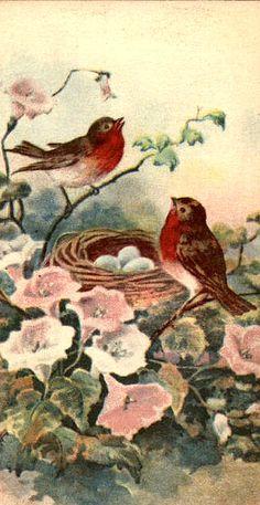 .vintage postcard