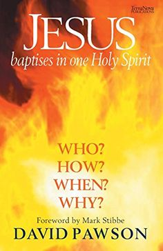 Jesus Baptises in one Holy Spirit by David Pawson http://www.amazon.com/dp/1901949702/ref=cm_sw_r_pi_dp_zm2uvb1Q2ECGD