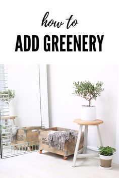 Dubbed a 'fresh and zesty yellow-green shade that evokes the first days of spring when nature's greens revive, restore and renew', Greenery is making waves throughout the interior design, fashion, foodie and wedding worlds.  Not least, Pinterest has gone full-on Greenery-gaga, and the platform is brimming with inspirational ways to incorporate the glorious shade into your life and home.  We've pulled together our favourite ways to add a dash of Greenery, from the bold to the beautiful.