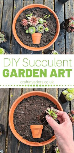 Colourful succulents already look like mini works of art. Here we show you how to plant a succulent pot to make your own piece of garden art. How To Make Garden Art With Colourful Succulents Colorful Succulents, Succulents In Containers, Cacti And Succulents, Planting Succulents, Planting Flowers, Cactus Plants, Indoor Cactus, Cactus Art, Air Plants