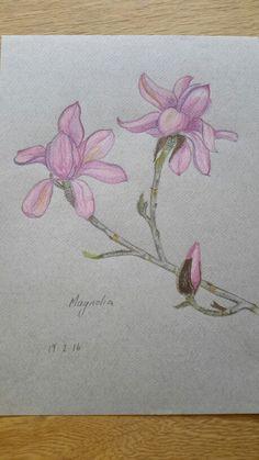 Nicole McGregor early works