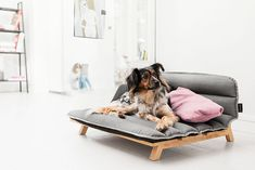 really-shit: If you have a dog, you need this… Dog Den is a trendy & unique dog bed from home decor brand Mnomo. The bed comes built with an oak frame and sports a mattress made out of Cordura, a fabric known for its durability and resistance to abrasions, tears and scuffs.