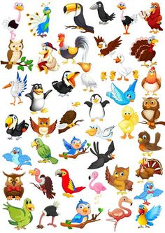 Elisa Webmail :: 18 Clip art Pins you might like Animal Pictures For Kids, Bird Template, Doll Painting, Animal Paintings, Clipart, Rock Art, Cute Cartoon, Pet Birds, Cute Art