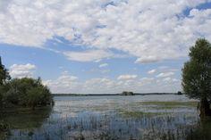 Lac de la Forêt d'Orient près de Troyes(10) France