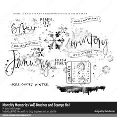 Monthly Memories Vol. 03 Brushes and Stamps No. Monthly Themes, Photograph Album, Photoshop Brushes, Marketing Materials, Digital Scrapbooking, Memories, Life, Stamps, Seals