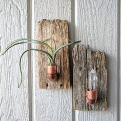 Best Pic Wall Holder - crystal display - air plant hanger - industrial planter - unique candle holder Tips If there is small space for the keeping flowerpots, holding flowerpots really are a good Alternative Diy Wall Art, Hanging Wall Art, Hanging Plants, Wall Hangings, Diy Art, Plant Wall, Plant Decor, Diy Wood Planters, Succulent Planters