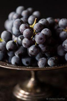 Concord Grapes Photographer: Melissa Hartfiel