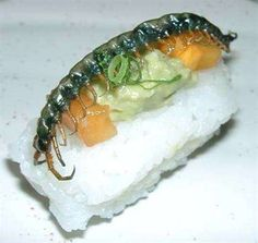 Insect Sushi RP by http://www.splashtablet.com the hyper-cool tablet case - sticks anywhere in kitchen or bath - on Amazon.com