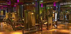 david barton gym - Поиск в Google