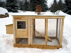 Urban Chicken Coop Plans (up To 4 Chickens