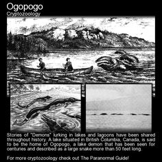 "Stories of ""Demons"" lurking in lakes and lagoons have been shared throughout history. A lake situated in British Columbia, Canada, is said to be the home of Ogopogo, a lake demon that has been seen. Myths & Monsters, Sea Monsters, Magical Creatures, Fantasy Creatures, Legends And Myths, Mothman, Creepy Stories, Horror, Urban Legends"