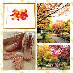 こんにちは。はなです(*^_^*)  外もすっかり紅葉の季節ですね。 近所の草木もしっかり色付いています。  みなさんは紅葉を観に行かれたりしましたか?  緑から黄色になってオレンジへまた変わるなんて本当に不思議ですよね。 歩いているだけで自然美に癒されちゃいます(*^^)v  私は毎年家の額縁に季節の物を飾っているので、 今年の秋も綺麗な葉を額に入れて飾ります♪  今年もsheepskinのブーツとグローブを購入したので好きなものを身に付けて寒さも満喫しようと思います。  みなさんも風邪引かないようにしっかり暖かくしてお過ごし下さい☆ *