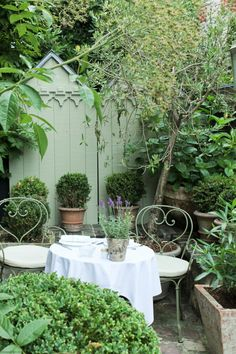 pretty seating in a small garden White Gardens, Small Gardens, Outdoor Gardens, Outdoor Garden Furniture, Outdoor Rooms, Outdoor Living, Shabby Chic Garden, Garden Seating, Garden Living