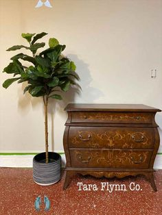 How to Stage your Furniture to Sell Fig Leaf Trees Add Height to the Overall Look.  #furniturepainter #furnitureartist #paintedfurniture #restyled #taraflynnco #taraflynn #handpainted #oneofakind #homedecor<br> Fig Leaf Tree, Fig Leaves, Painted Flower Pots, Ace Hardware, Terracotta Pots, Your Paintings, Staging, Painted Furniture, Decorative Boxes