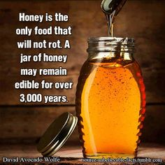 Nutrition Matters #15: Honey is the only food that will not rot. A jar of honey may remain edible for over 3,000 years.