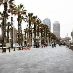 Barcellona Beach ;)