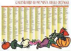 Il Calendario delle semine, segui la guida per il tuo orto