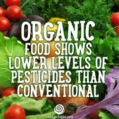 Organic farming is what farmers did for thousands of years prior to the industrial agriculture takeover of U. Organic Farming, Organic Gardening, Healthy Foods To Eat, Healthy Recipes, Food Shows, Food Safety, Organic Recipes, Eating Well, Good To Know