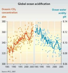 CO2 and acidity in oceans #OceanAcidification