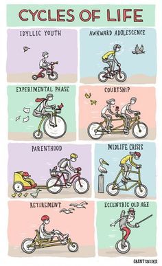 Cycles of life. Life of cycling.