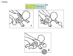 Developing Sitting Balance in Infants http://therapylibrary.com ...