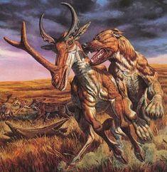 Synthetoceras being attacked by a Bear Dog – Animal Planet Prehistoric Wildlife, Prehistoric World, Prehistoric Creatures, Wildlife Art, Vida Animal, Jurassic Park World, Extinct Animals, Dinosaur Art, Fauna