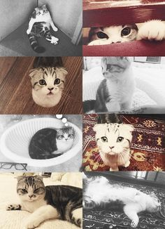 Meredith And her bad posture