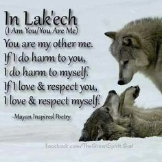 Discover and share Native American Wolf Quotes. Explore our collection of motivational and famous quotes by authors you know and love. Quotes Wolf, Me Quotes, Werewolf Quotes, Wolf Pack Quotes, Passion Quotes, Irish Quotes, Heart Quotes, Wolf Spirit, Spirit Animal