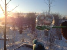 Blowing bubbles in the winter - Ekuddens förskola, Bubblan ≈≈