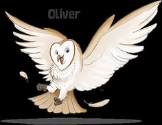 """Oliver The Owl reminds us that """"Jesus gives us love."""""""