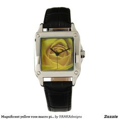 Magnificent yellow rose macro picture wristwatch