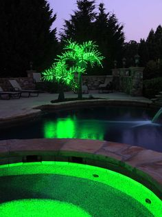 14' LED realistic palm tree by the pool. What a wonderful glow!