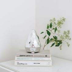 Experience the beneficial properties of diffusing essential oils with the aromaGem Chrome Ultrasonic Diffuser. Best Essential Oil Diffuser, Best Essential Oils, Traditional Doors, Aroma Diffuser, Natural Home Decor, Home Decor Store, Clean Design, Inspiration, Chrome