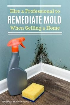 7 Off the Wall Mistakes Home Sellers Make | Covering Up Mold #howto #realestate #advice #tips #realtor #homesforsale #homeselling #selling #homebuying #buying