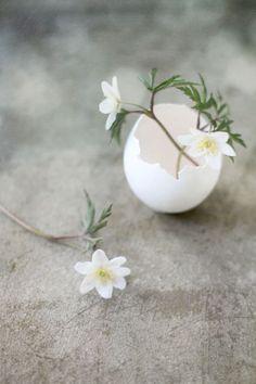 stylizmo - easter - easter decoration - keep it simple! Diy Osterschmuck, Deco Nature, Diy Ostern, Diy Easter Decorations, Spring Sign, Keep It Simple, Simple Diy, Egg Shells, Easter Crafts