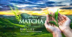 Matcha - Storys: Her mit deiner Geschichte!