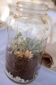 Recycle Reuse Renew Mother Earth Projects: How to make Mason Jar Succulent Garde. Recycle Reuse Re Mason Jar Succulents, Mason Jar Terrarium, Mason Jar Vases, Succulent Terrarium, Bottles And Jars, Mason Jar Diy, Mason Jar Crafts, Succulents Garden, Planting Flowers